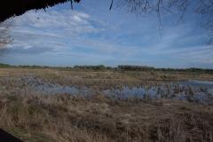 Naturschutzgebiet El Acebuche