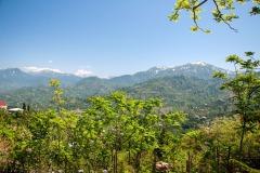 Blick zum Mtirala Nationalpark