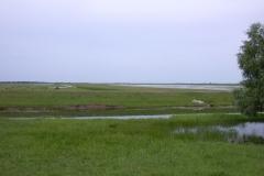 Landschaft bei Stipoc