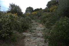 Wanderweg nach Sant Antonino