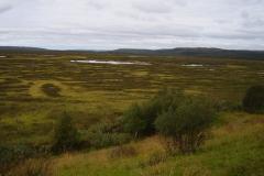 Landschaft am Varangerfjord by Seija