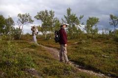 Unterwegs im Kevo Naturreservat