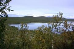 Im Kevo Naturreservat