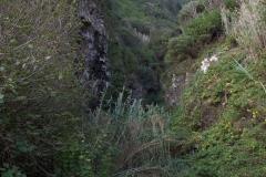 Ausblick entlang des Wanderweges