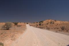 Landschaft im Kgalagadi National Park
