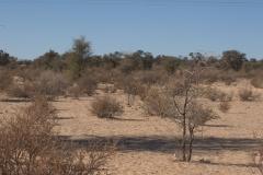 Landschaft bei Askham