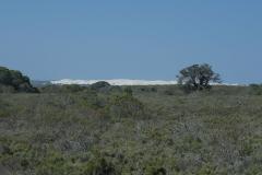 Im De Hoop Nature Reserve.