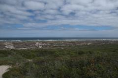Im West Coast National Park