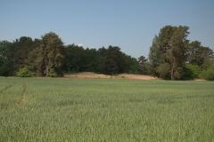 Sanddünen bei Veseli