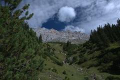 Blick bergauf auf dem Weg zur Rotmoosalm