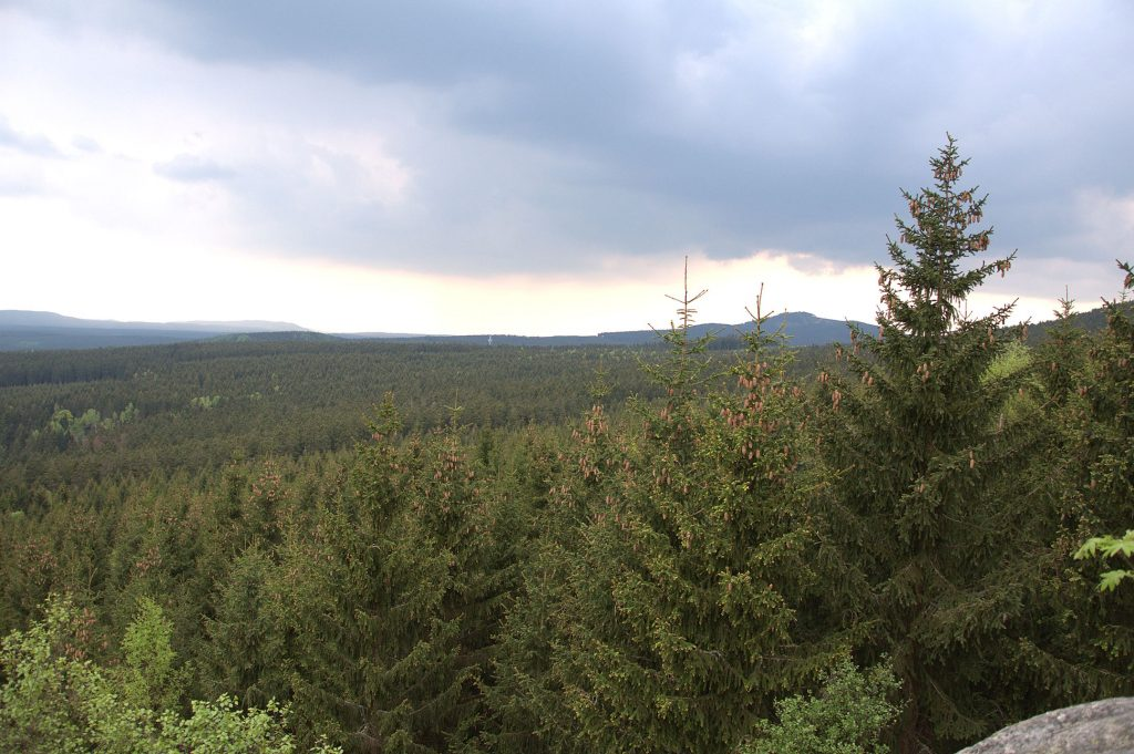 Am Trudenstein mit Blick zum Brocken