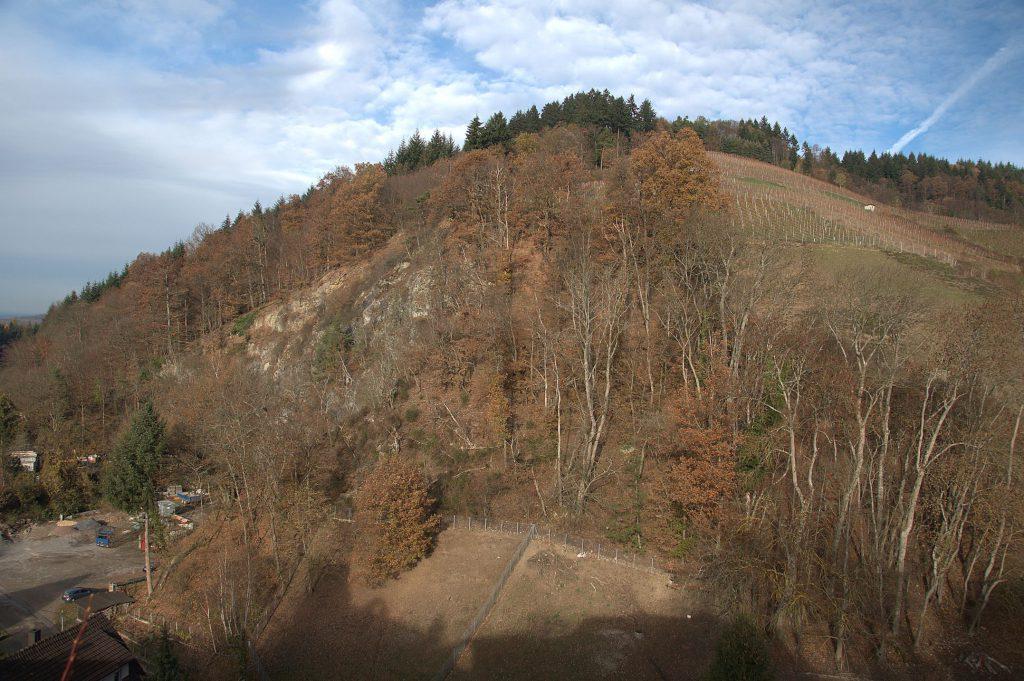 Blick von der Ruine Diersburg