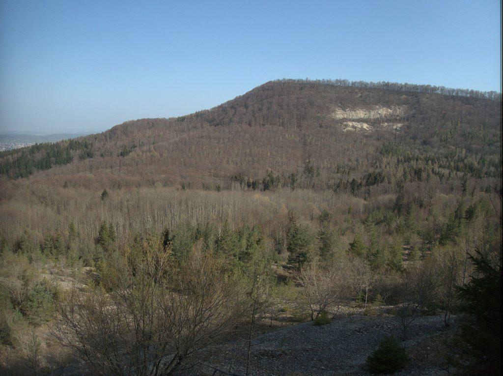 Blick vom Bergrutsch zur gegenüber liegenden Anhöhe