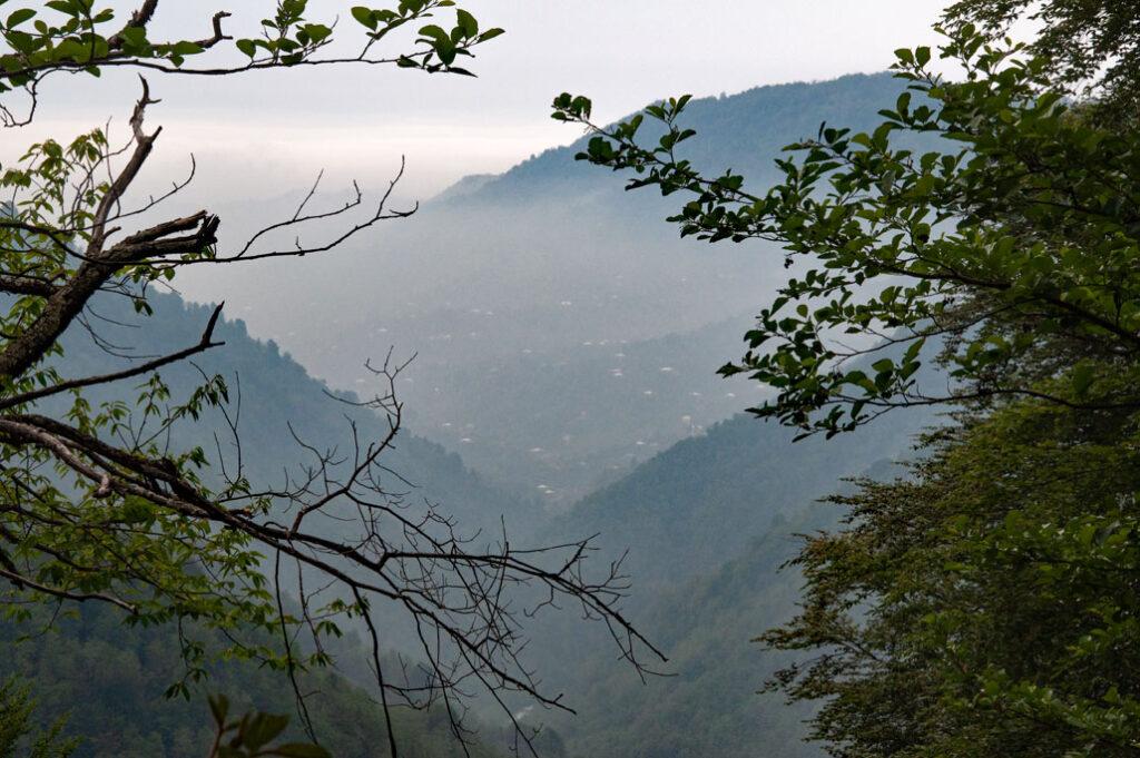 Im Mtirala Nationalpark